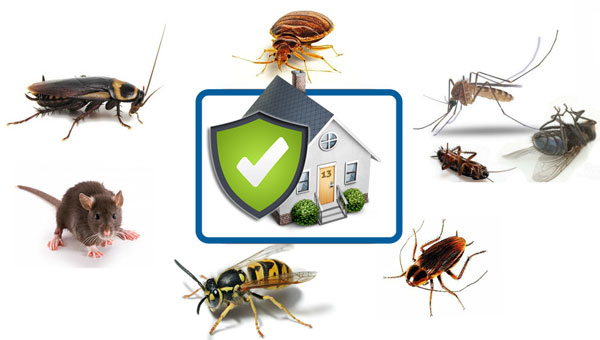 house_ses_secure