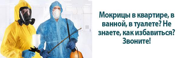 """<a href=""""http://disinfection-eko.ru/wp-content/uploads/2015/08/kak-izbavitsya-ot-mokric15.jpg""""><img src=""""http://disinfection-eko.ru/wp-content/uploads/2015/08/kak-izbavitsya-ot-mokric15.jpg"""" alt=""""Уничтожение мокриц"""" class=""""aligncenter size-full wp-image-1664"""" /></a>"""