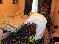 Как уничтожить клопов - подскажут в disinfection-eko.ru