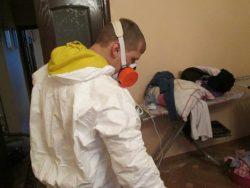 Уничтожение клопов недорого – в disinfection-eko.ru