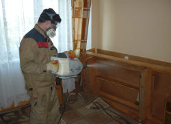 Дезинфекция от клопов в Москве – обращайтесь в disinfection-eko.ru