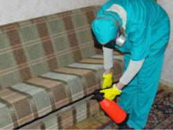 disinfection-eko.ru – все о том, как выводить домашних клопов