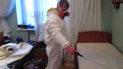 Уничтожение клопов – цена приятно удивит в disinfection-eko.ru