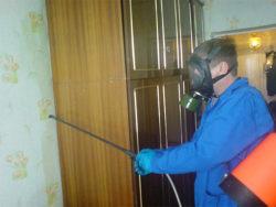 Обработка квартиры от клопов – недорого в disinfection-eko.ru