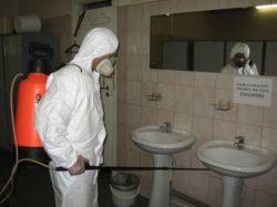 Дезинфекция квартиры от клопов – обращайтесь в disinfection-eko.ru