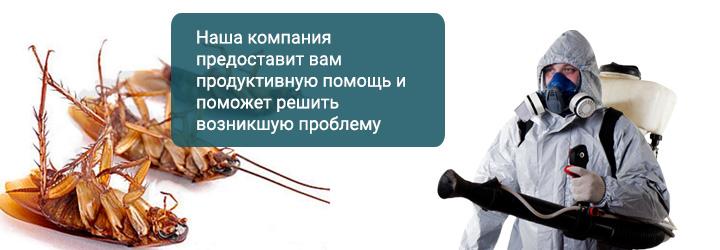 Уничтожение блох в Москве