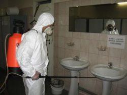 Проводим на территории всей Москвы недорогое и качественное уничтожение вредных грызунов