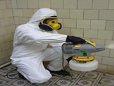 Только у нас уничтожение насекомых проводится быстро, качественно, эффективно и недорого
